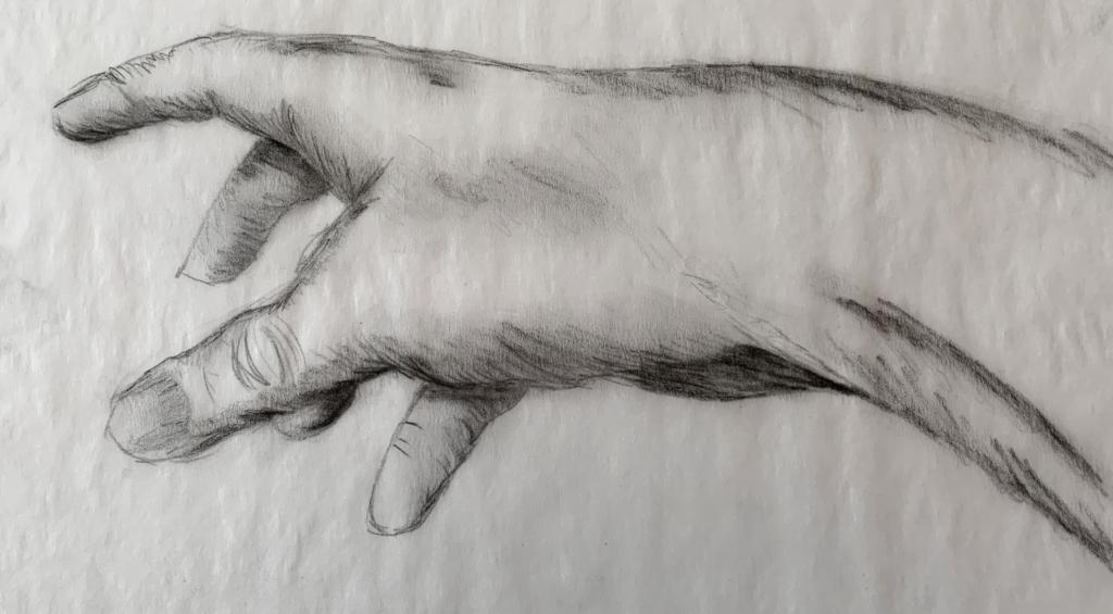 Hand Sketch form Life (Grade 7) - pencil