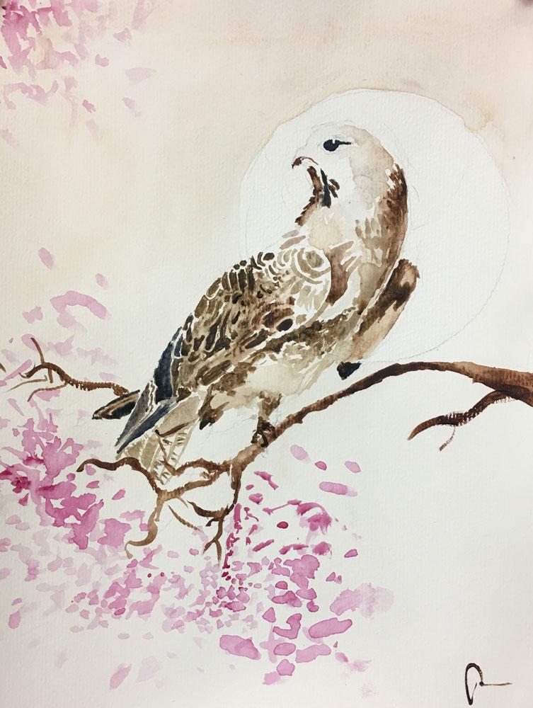 Hawk (Grade 10) Watercolor